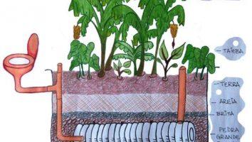VII Vivência Agroecológica MUDA Solano: Saneamento Ecológico
